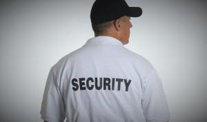 Stadium_Concert_Security